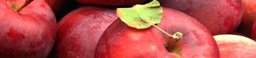 apples-880
