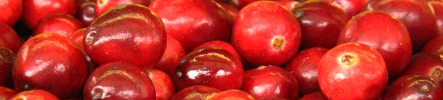 cranberries-880