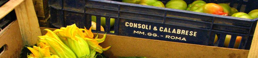 fiori-di-zucchini-testaccio-880
